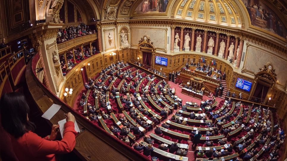 Sénatoriales 2020 : une goutte verte dans un océan de bleu