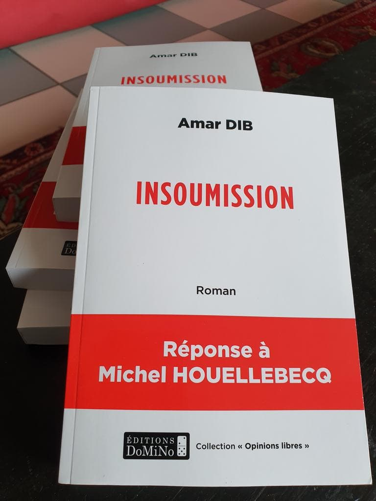 """""""Insoumission"""" : un auteur lyonnais répond à Michel Houellebecq"""